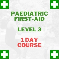 first aid at work 1 day paediatric first aid course